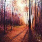 John Connolly Autumn Shadows woodland painting for sale