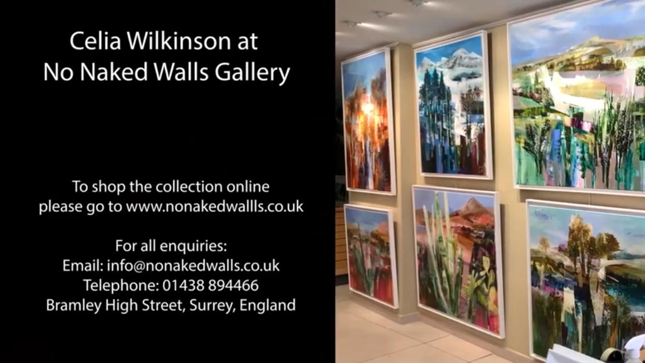 Celia Wilkinson Online Exhibition